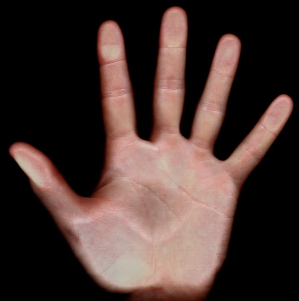 8 inch hand scan Actual Size Image