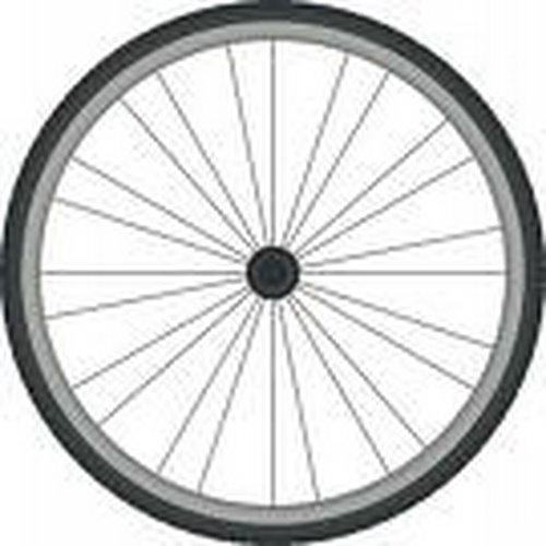 bike wheel Actual Size Image