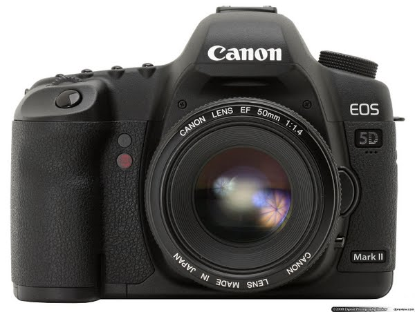 Canon 5D Mark II Actual Size Image