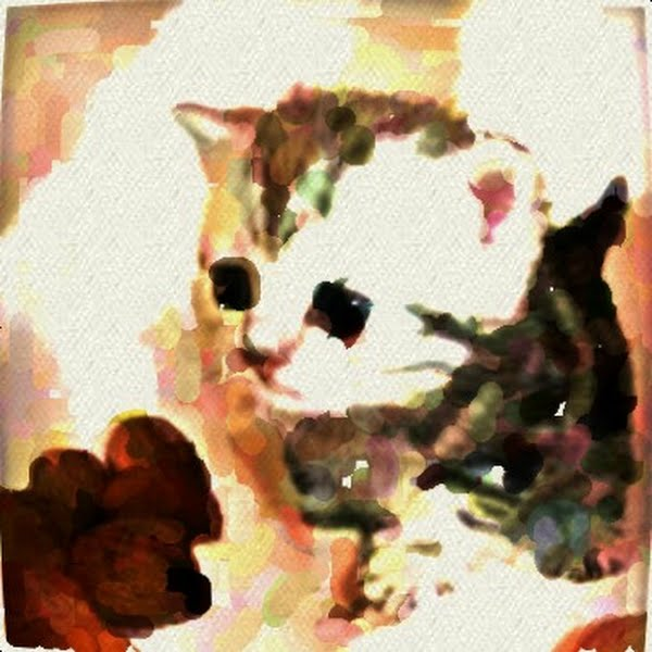 Cute Kitty Painting With Oil Brush Actual Size Image