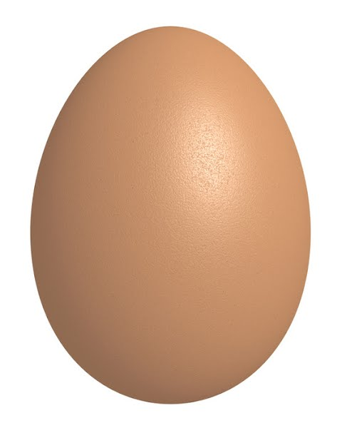 Egg Actual Size Image