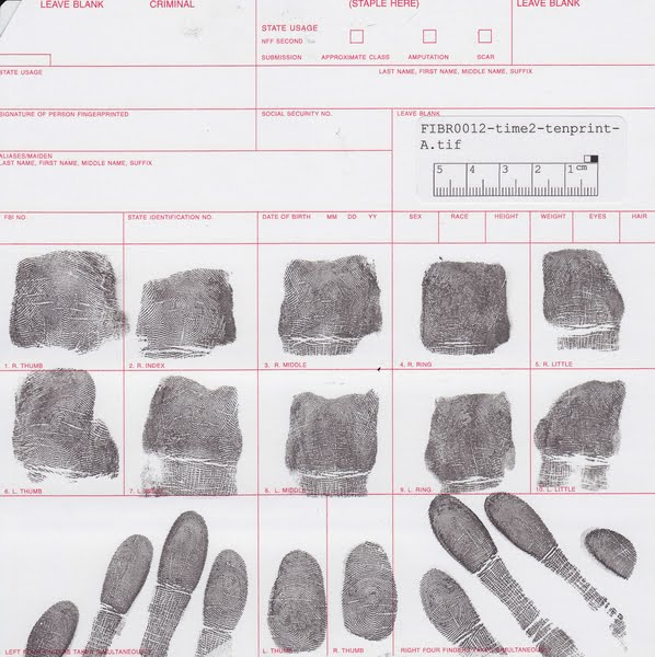 Fingerprints Actual Size Image
