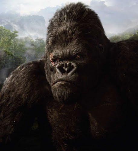 real size king kong!!!!! Actual Size Image