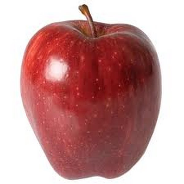 Red Apple  Actual Size Image